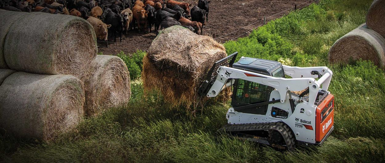 Bobcat T770 compact track loader and bale fork attachment moving a hay bale near a cattle herd.
