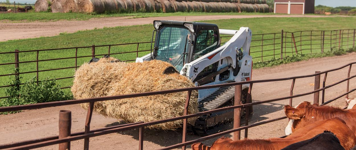 Bobcat T770 compact track loader carries hay on a cattle farm.