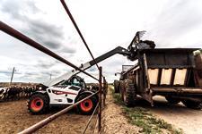Bobcat V723 VersaHANDLER telehandler filling dump truck on a farm.