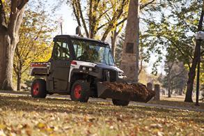 3650 Utility Vehicle