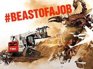 Bobcat Beast Wallpaper
