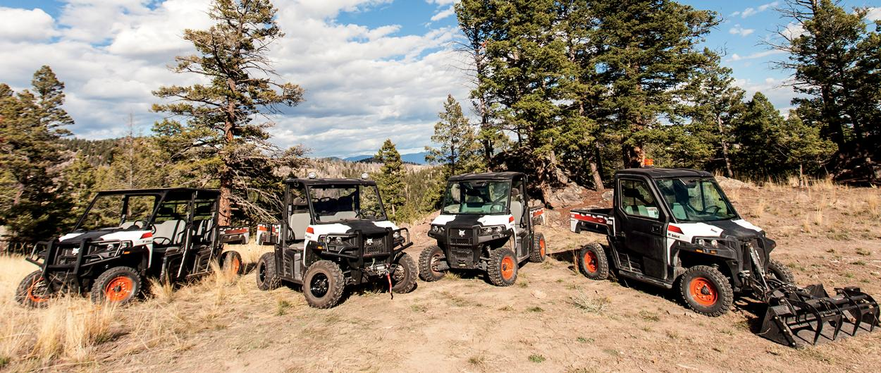 Entire lineup of Bobcat utility vehicles (UTVs), including 3400, 3400XL, 3600, and 3650 on a scenic mountian view.