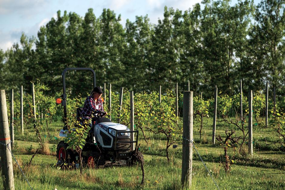 Operator Mowing Between Rows In An Orchard With A CT1021 Compact Tractor