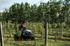 Bobcat Tractor Owners Uses Compact Tractor To Maintain Vineyard