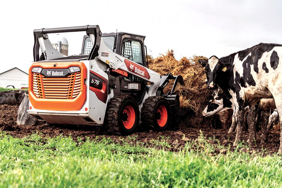Dairy Farming Using Bobcat Skid-Steer Loader To Haul Feed
