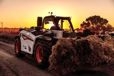 Bobcat V519 Telehandler moves hay with the grapple attachment.