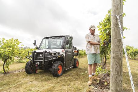 Bobcat 3400 utility vehicle with a modular cab in the background while a farmer checks grape vines at a winery.
