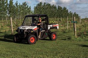 Farmer Drives A Bobcat UTV Through An Orchard