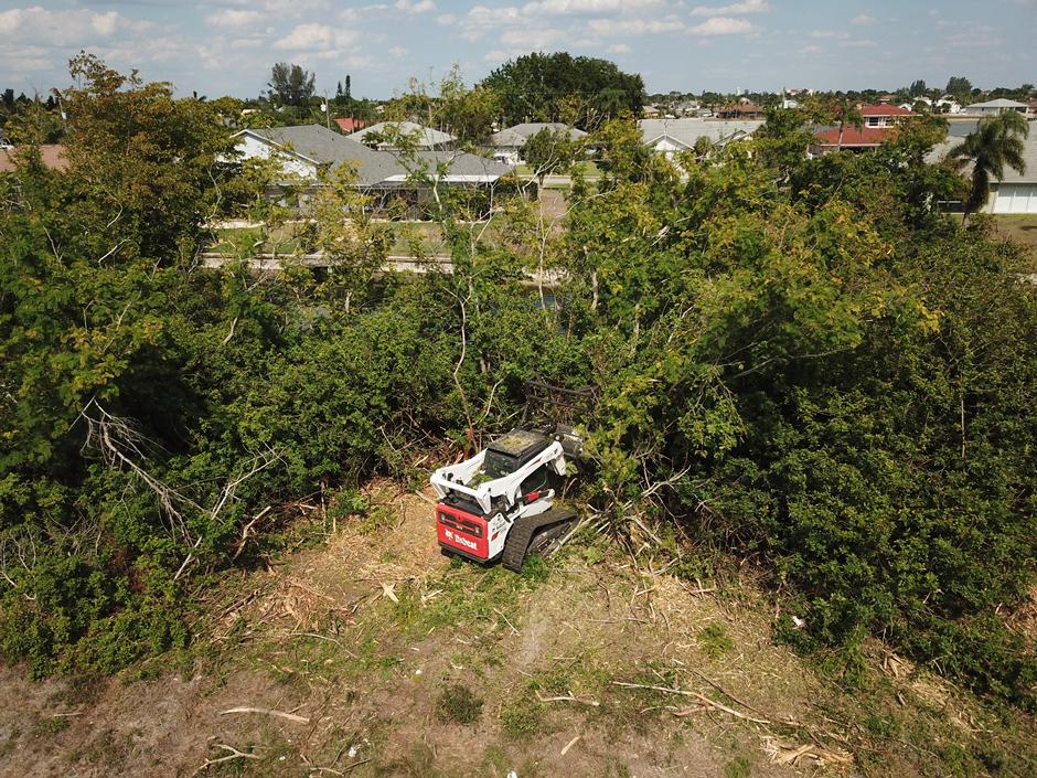 Operator Uses Compact Loader With A Brush Cutter Attachment To Take Down A Tree On Land Overgrown With Brush