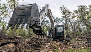 Operator Using Bobcat E145 Large Excavator With Clamp Attachment To Clear Fallen Timber In Woods