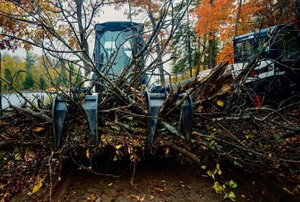 Bobcat Loader With Grapple Attachment Clearing Brush From Worksite