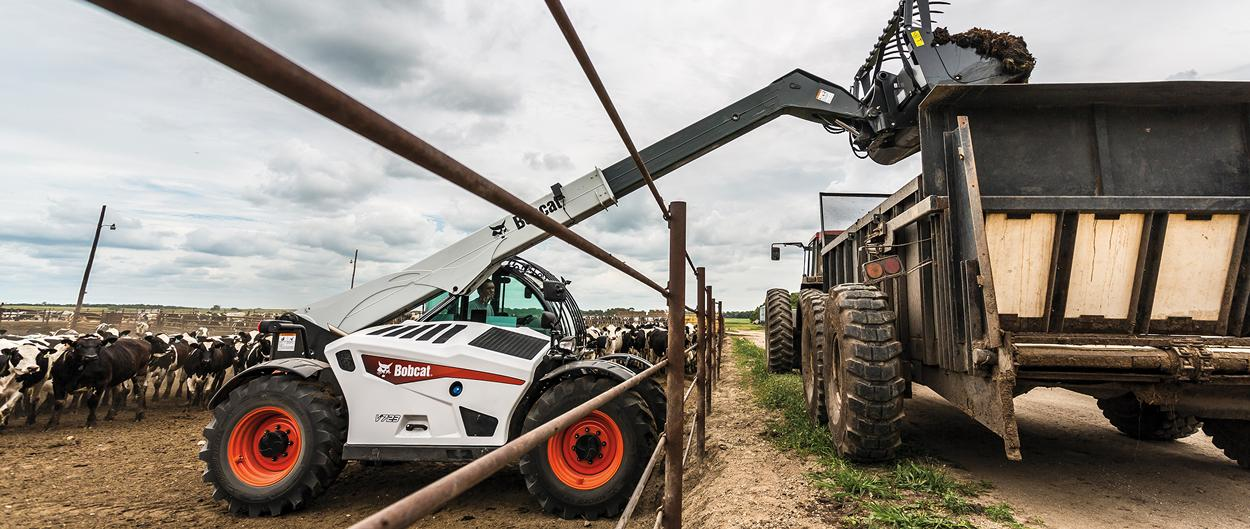 Bobcat V723 VersaHANDLER telescopic tool carrier (telehandler) lifts a load of manure into a truck on a dairy operation.