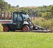 Toolcat 5600 with a Brushcat rotary cutter mowing tall grass.