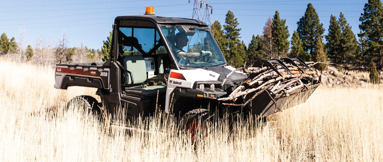 A Bobcat 3650 utility vehicle with grapple attachment carries a load of firewood.