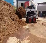 Bobcat Skid Steer Loader with bucket