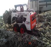 Bobcat Skid Steer with grappler attachment